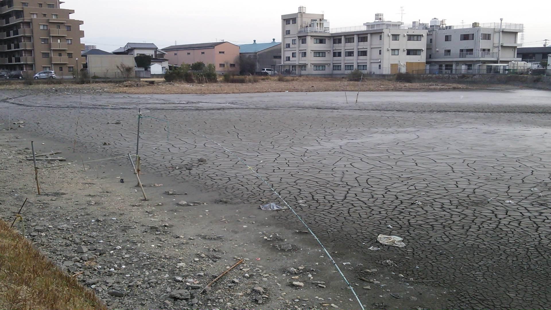 豊中町の雨水菅の清掃と中池の除草がされました。