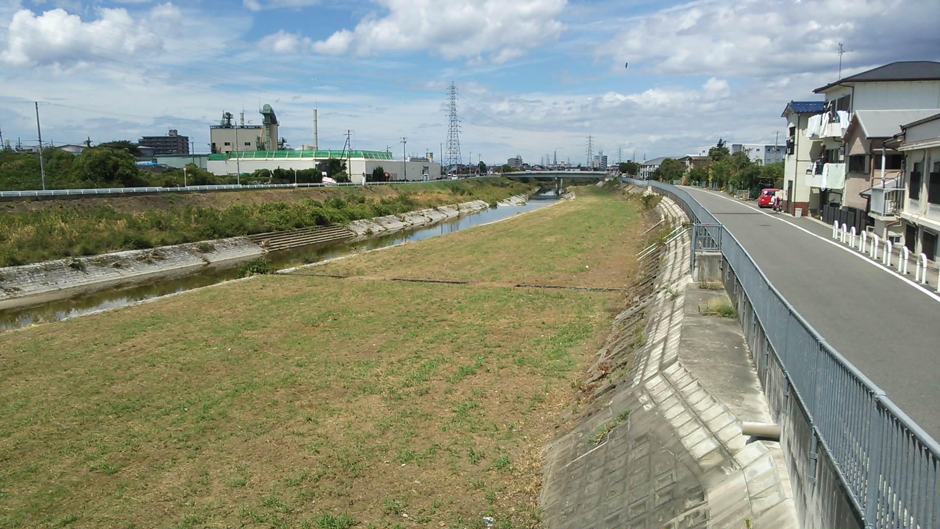 大津川の堤防敷の除草が行われました!